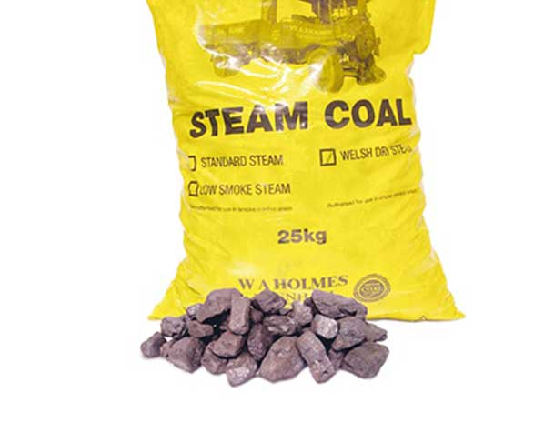 Steam Coal - 6